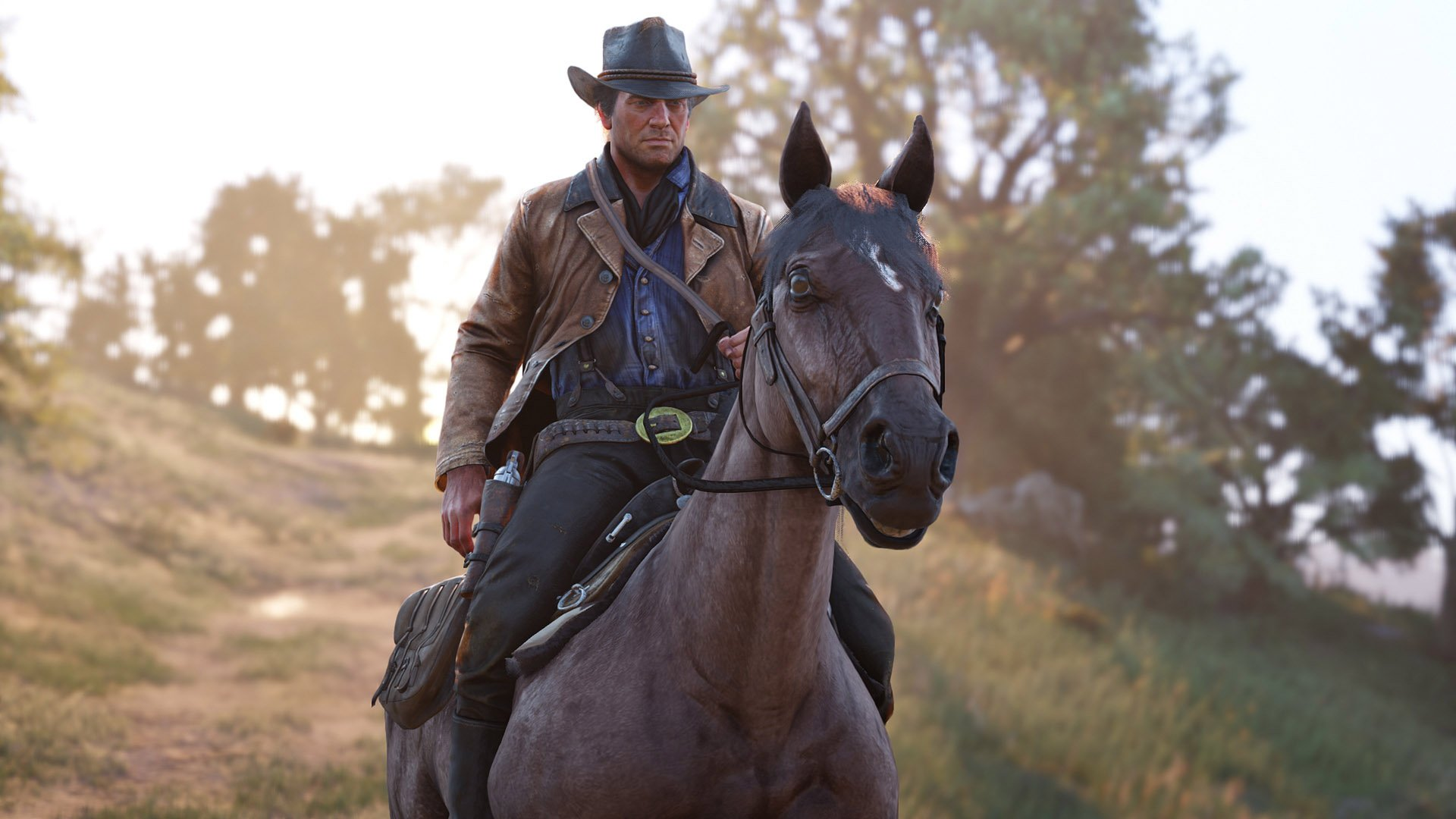 Horse bonding, grooming, and reviving - Red Dead Redemption