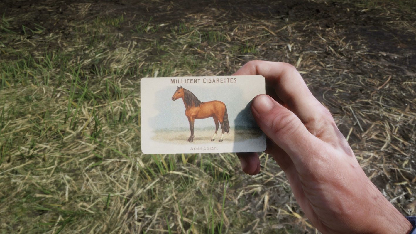 All Breeds Of Horses Cigarette Card Locations In Red Dead Redemption 2 Shacknews