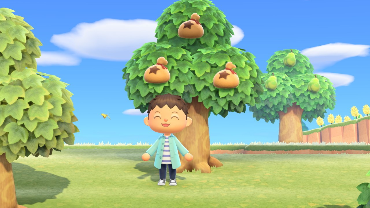 how to grow a money tree animal crossing new horizons feature