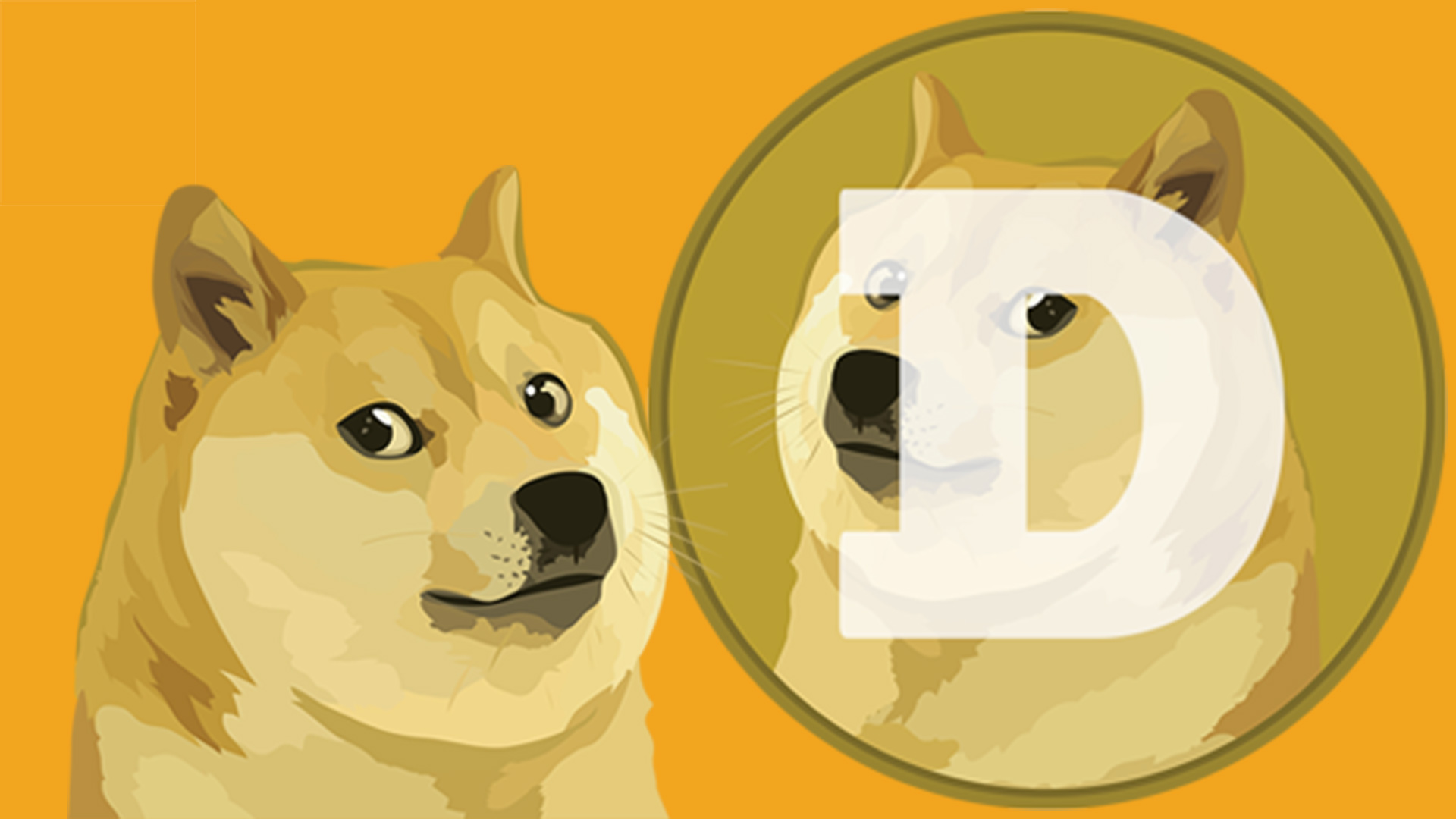 Where To Buy Dogecoin Doge Right Now Shacknews