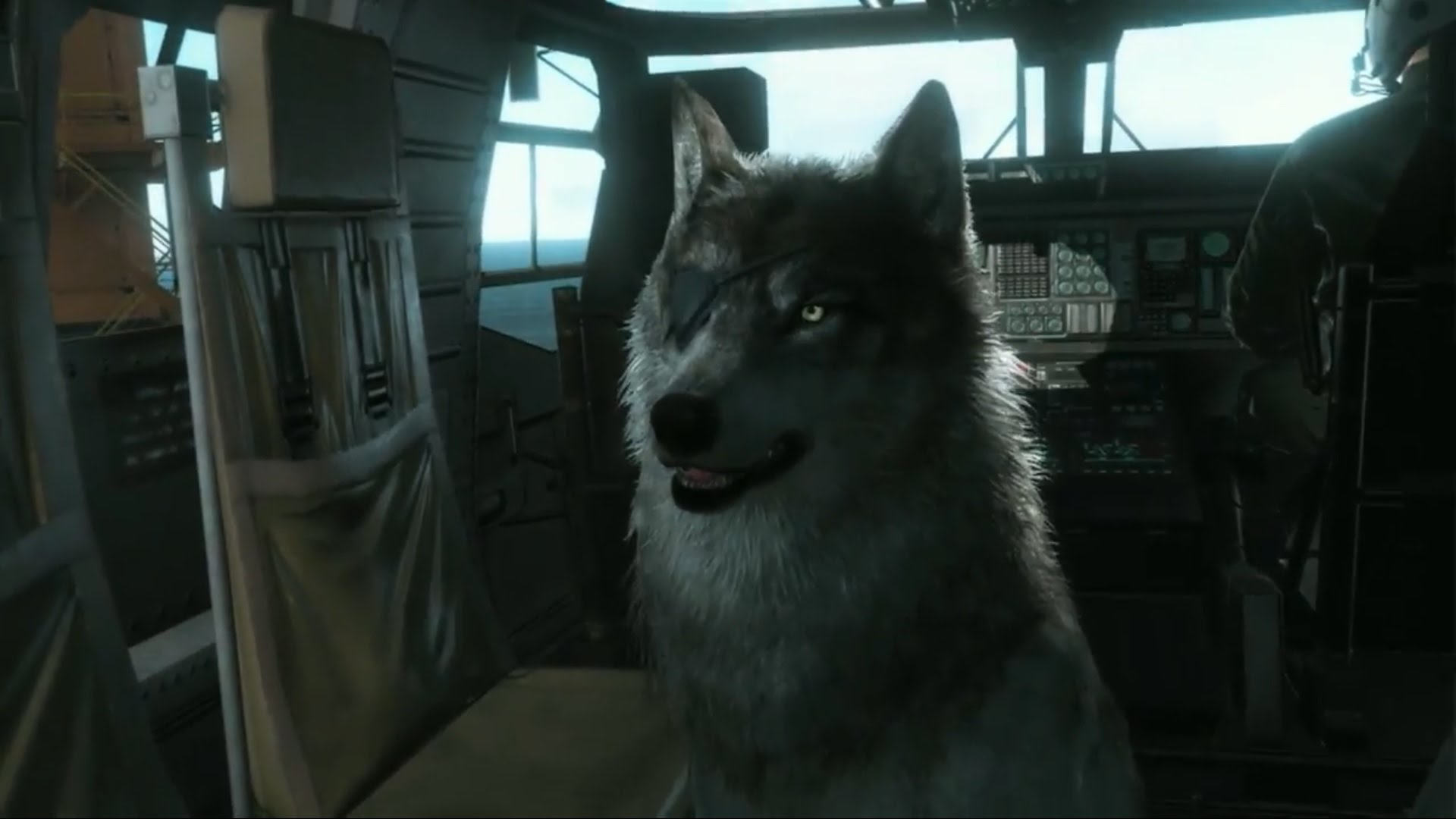 Metal Gear Solid 5: How to Recruit D-Dog and Quiet