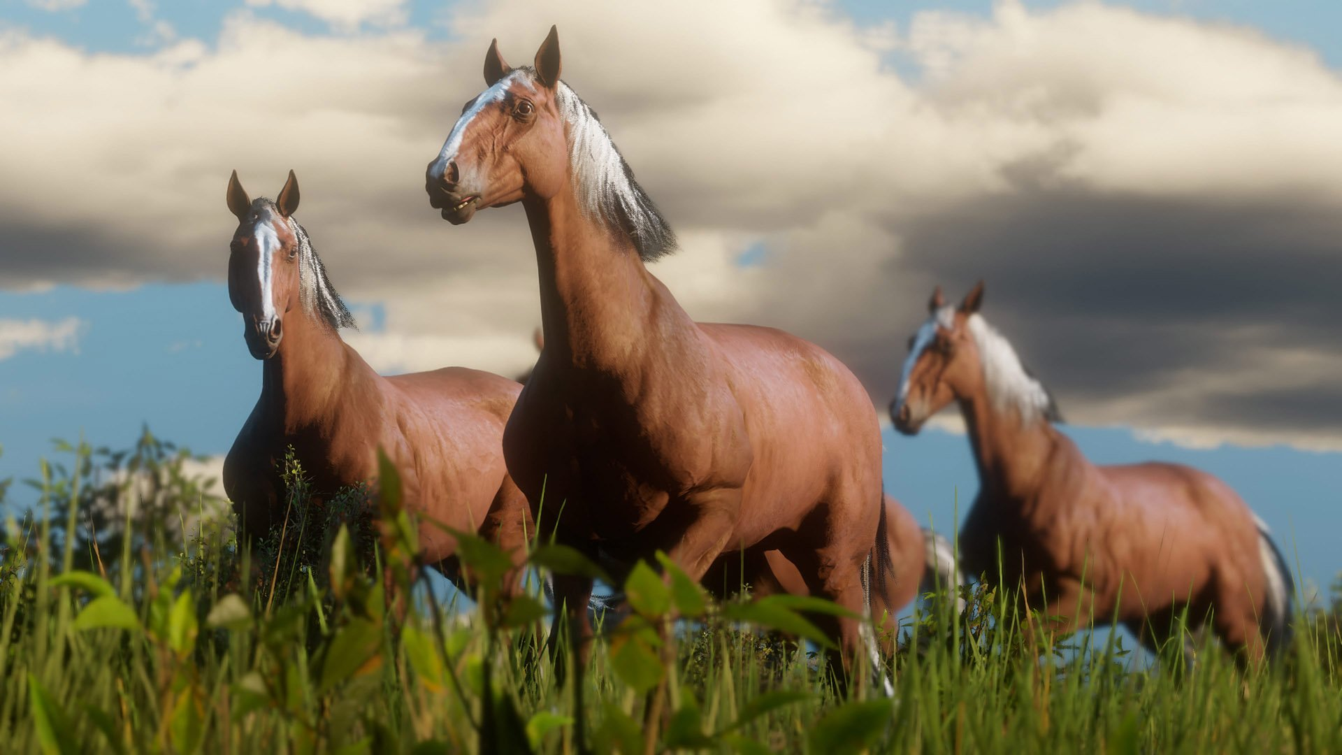 Many different types of horses are available in Red Dead Redemption 2.
