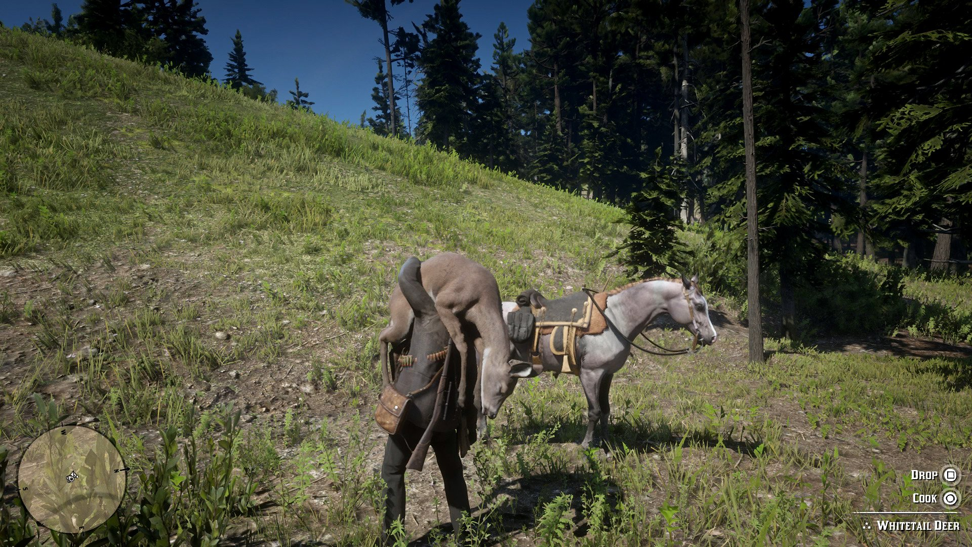 Complete hunting guide - Red Dead Redemption 2 | Shacknews