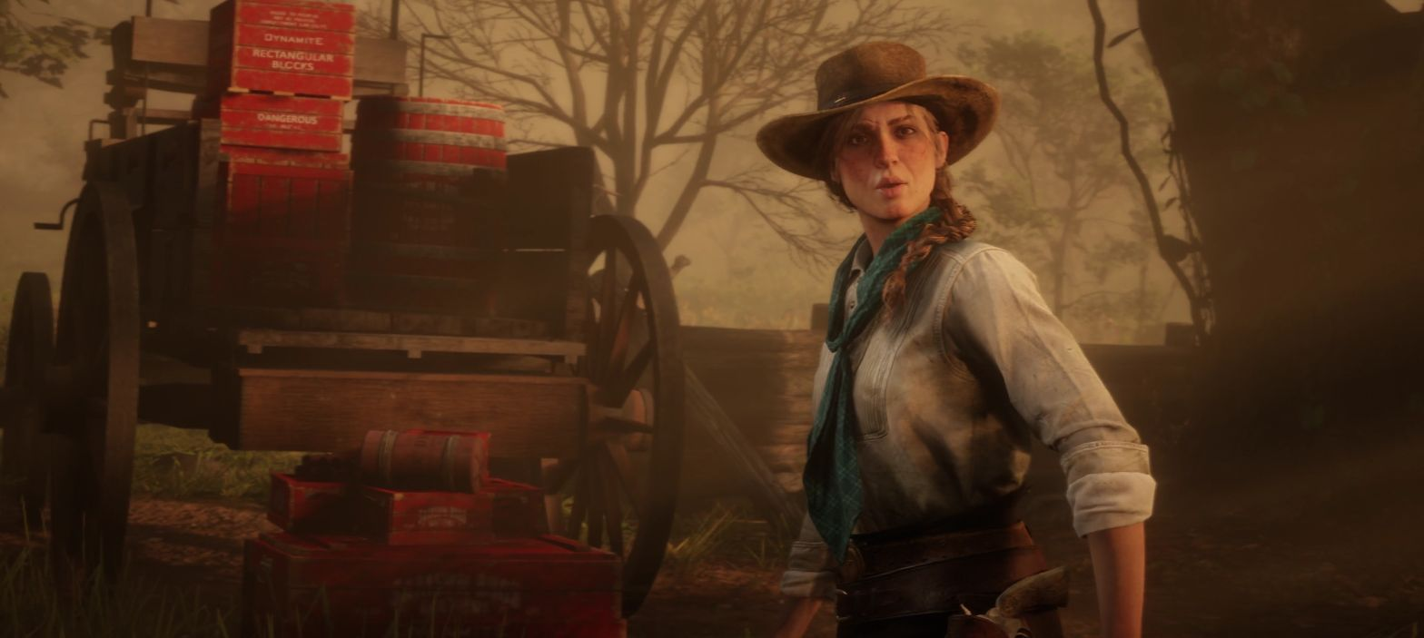 Red Dead Redemption 2's launch trailer is