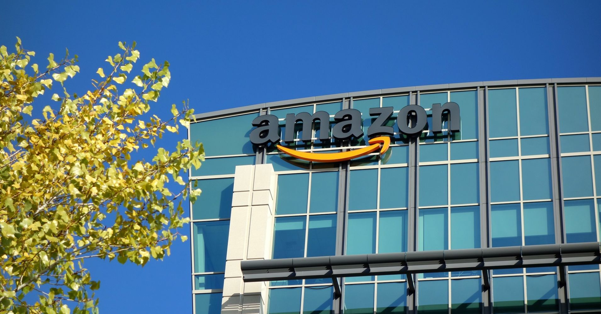 Jeff Bezos: One day, Amazon will go bankrupt