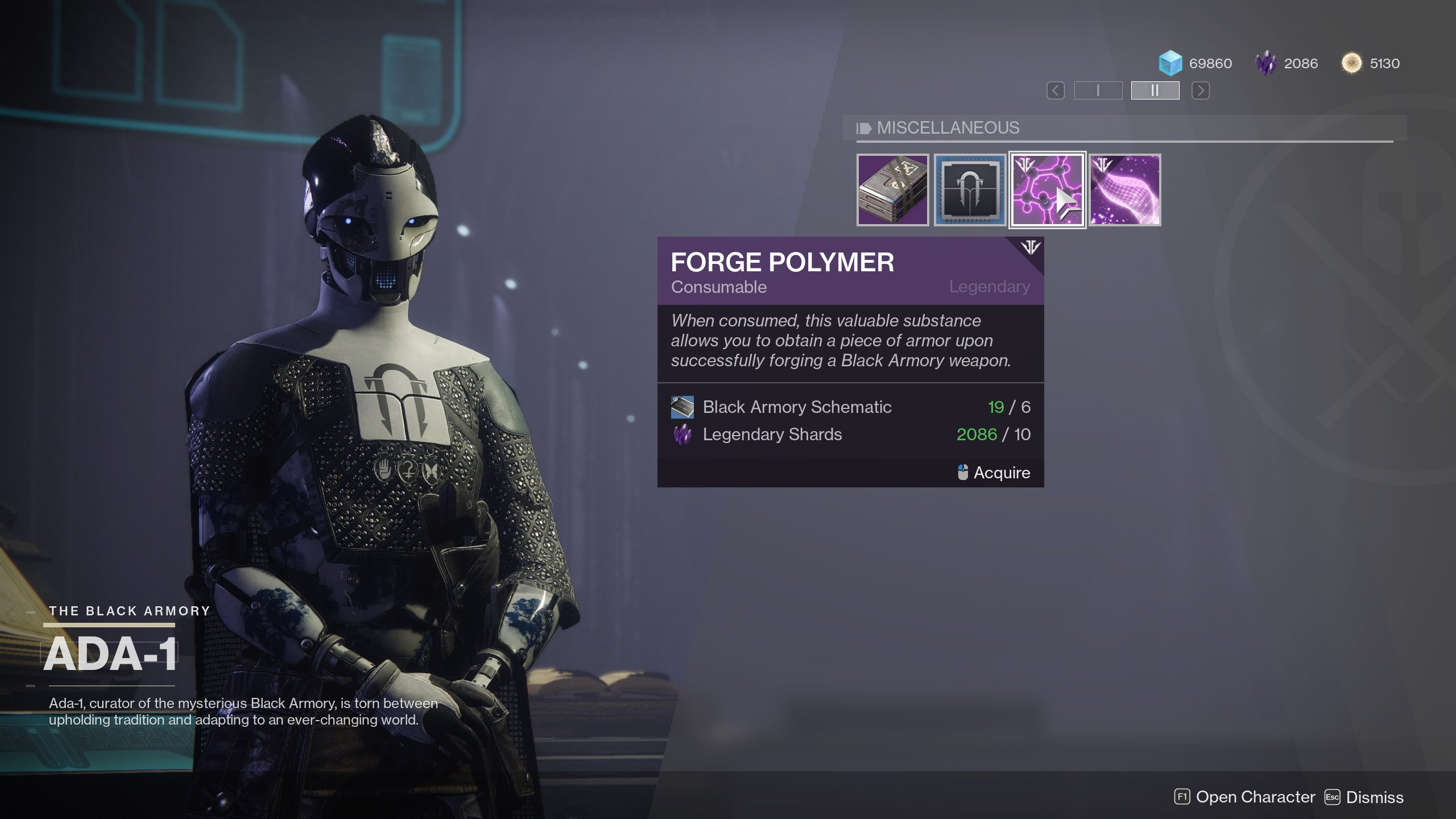 Forge Polymer Destiny 2
