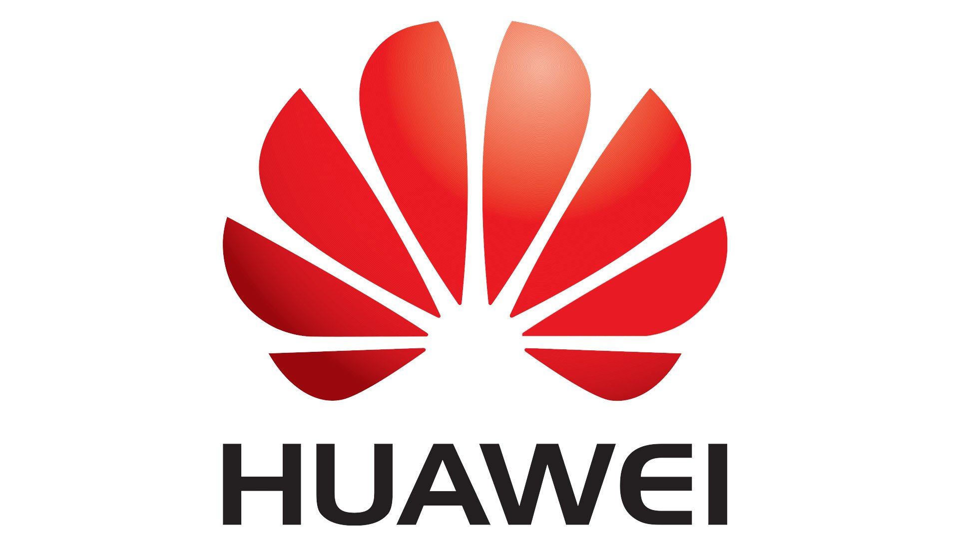 Google removes official support for Huawei after blacklist