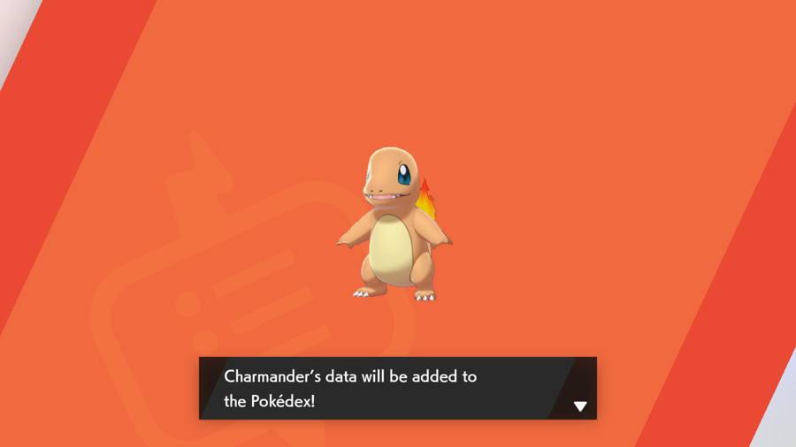 Charmander in Pokemon Sword and Shield
