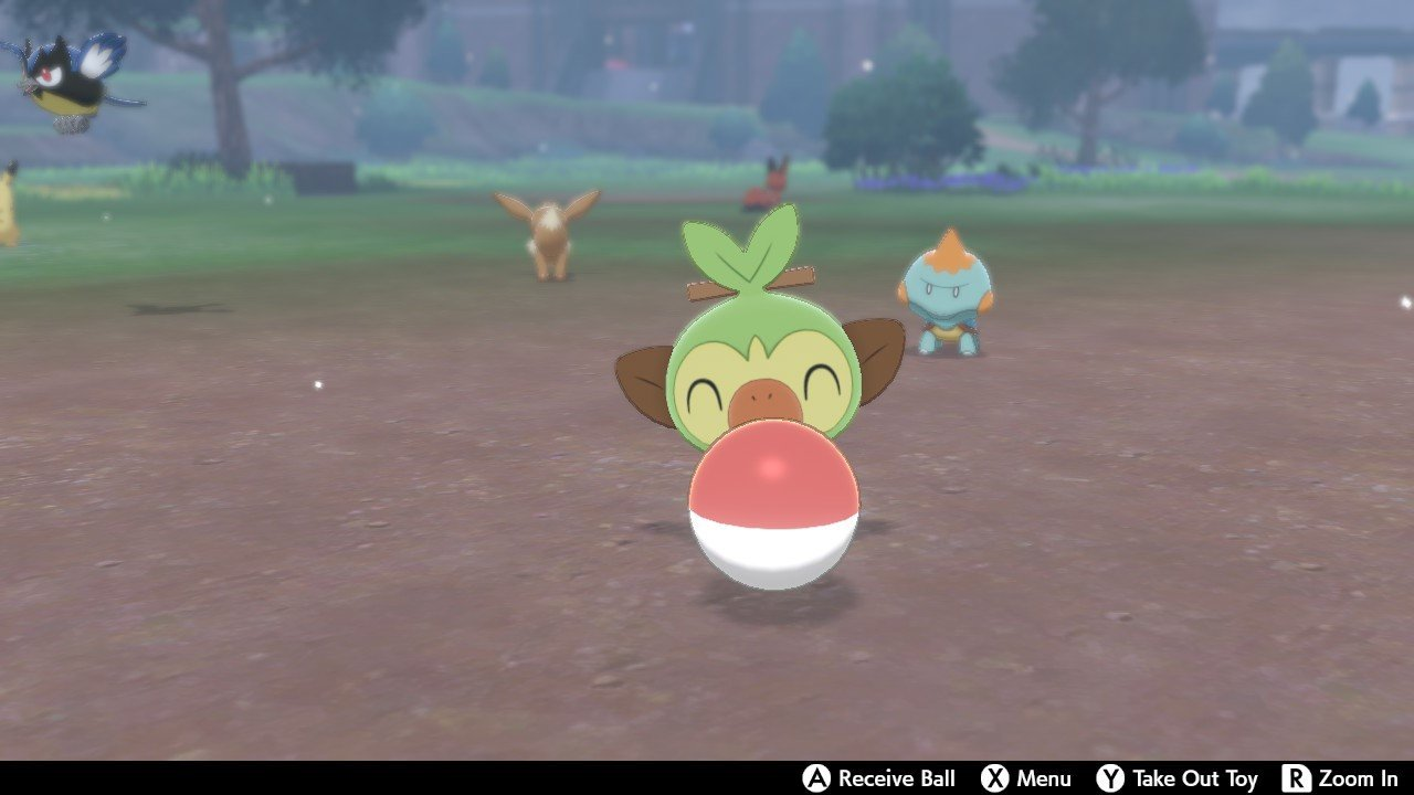 Pokemon Sword and Shield - playing with Pokemon in camp