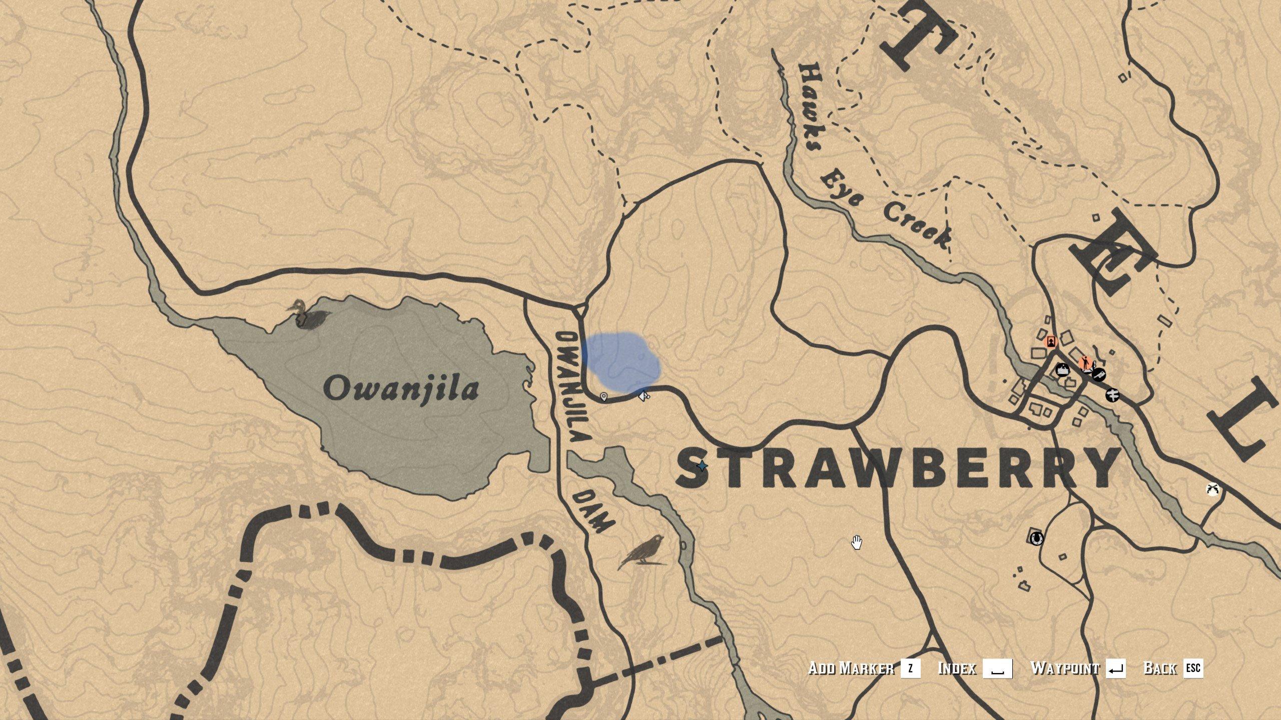 Eagle location - Owanjila Dam - RDR2