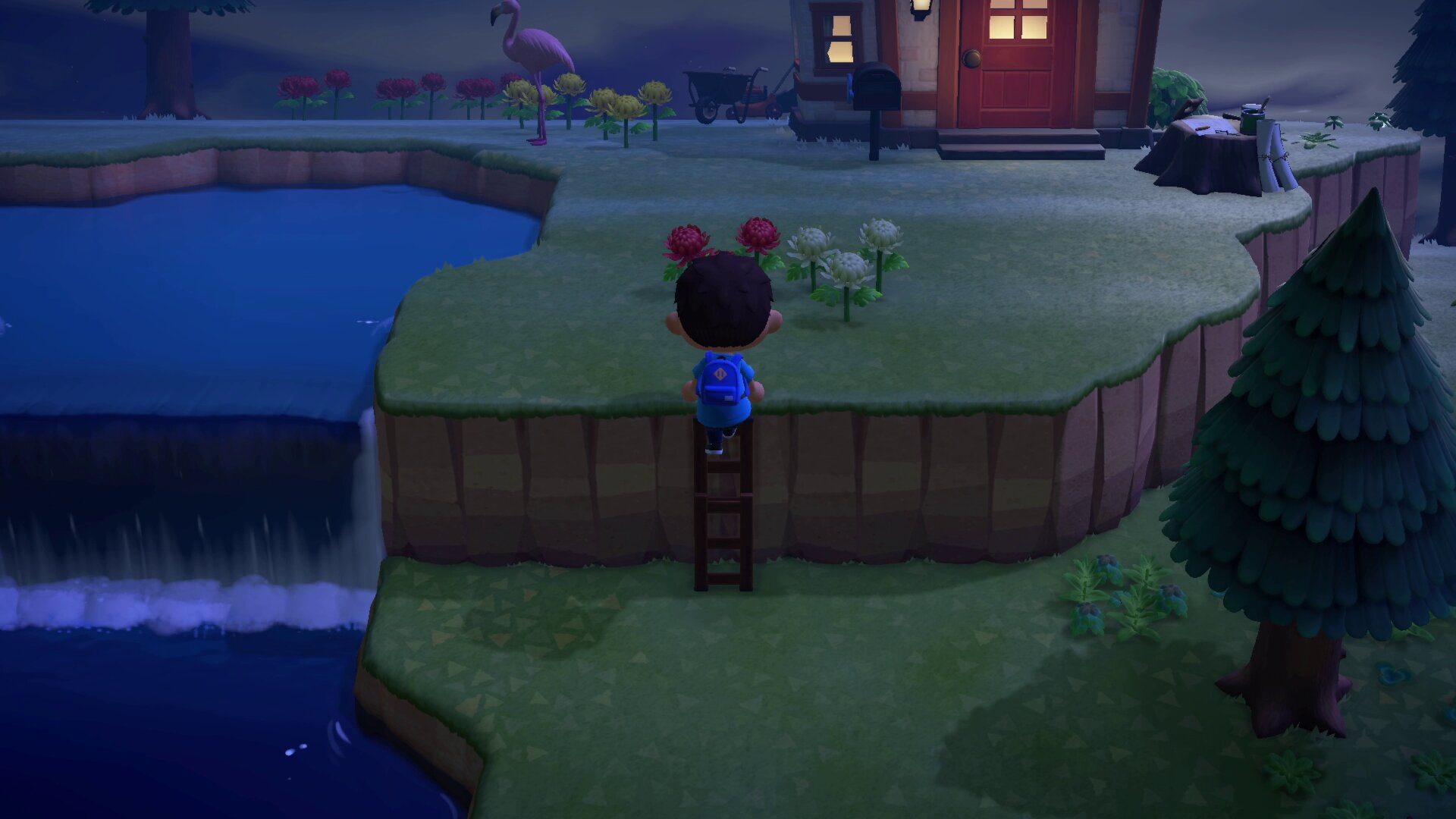 how to use Ladders - Animal Crossing: New Horizons