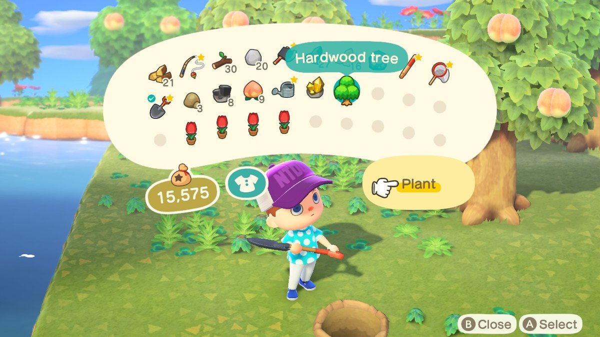 How To Chop Down Trees Animal Crossing New Horizons Shacknews What if the tree is dangerous/ unstable, can i legally remove it? how to chop down trees animal
