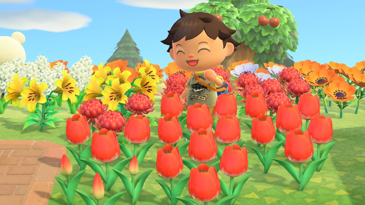 Flowers in animal crossing: new horizons