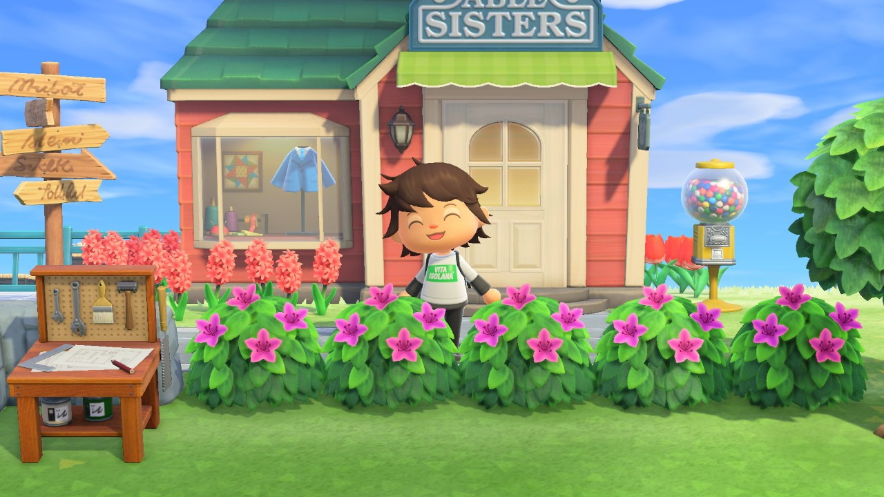 shrubs bought from Leif - Animal Crossing: New Horizons