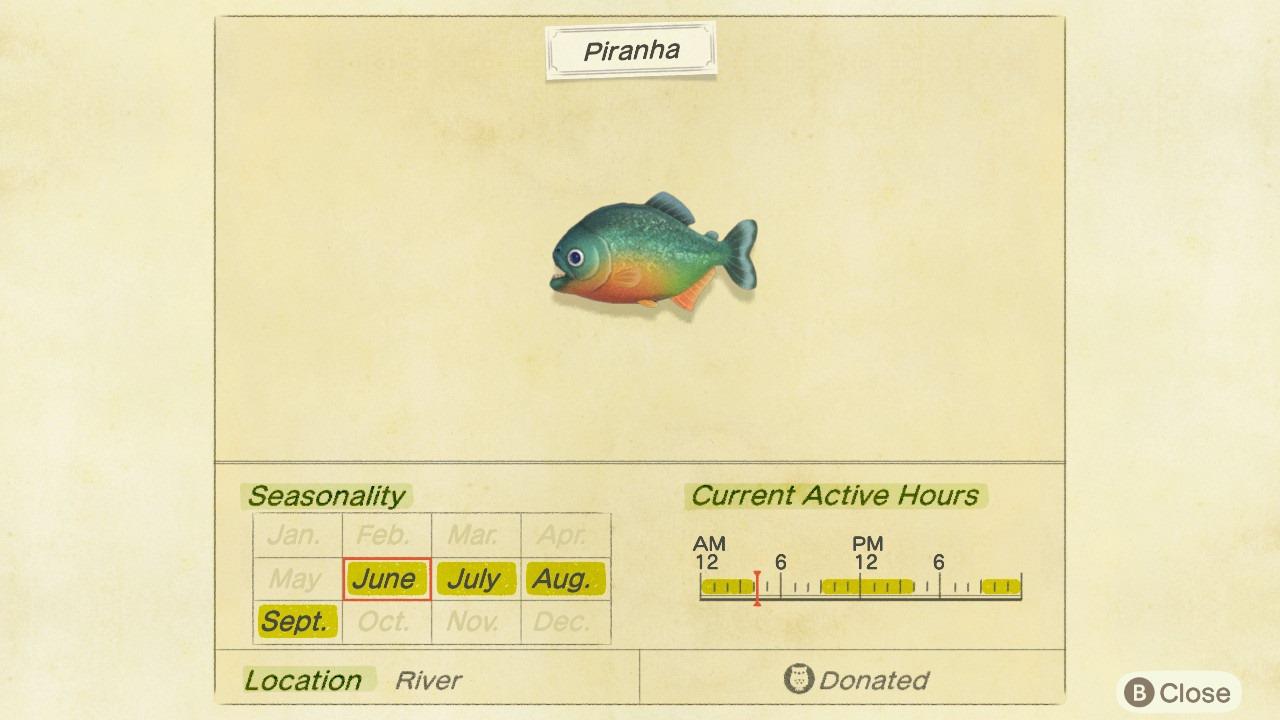 piranha critterpedia entry - animal crossing: new horizons