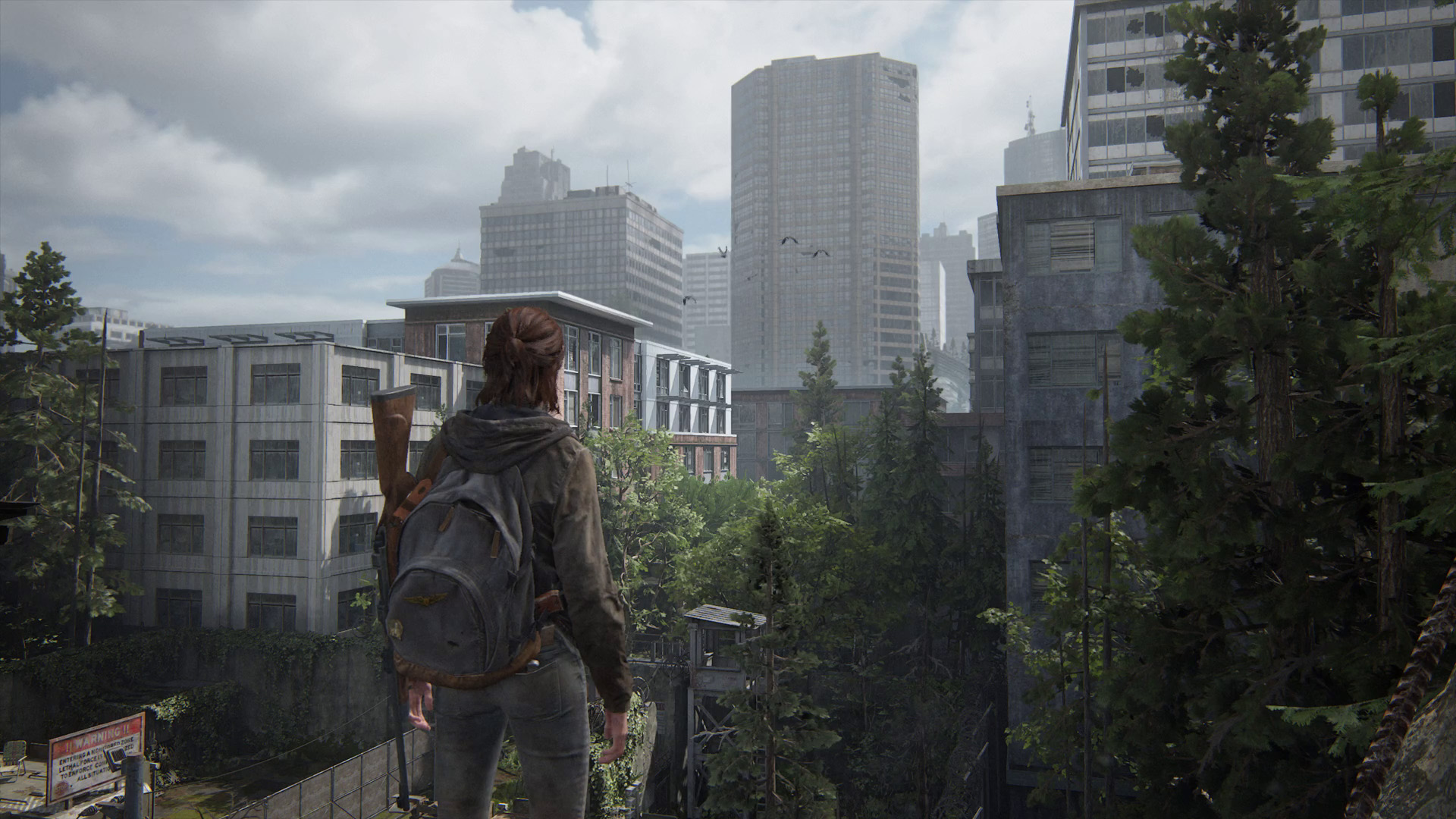 the last of us part 2 - ellie looking into seattle