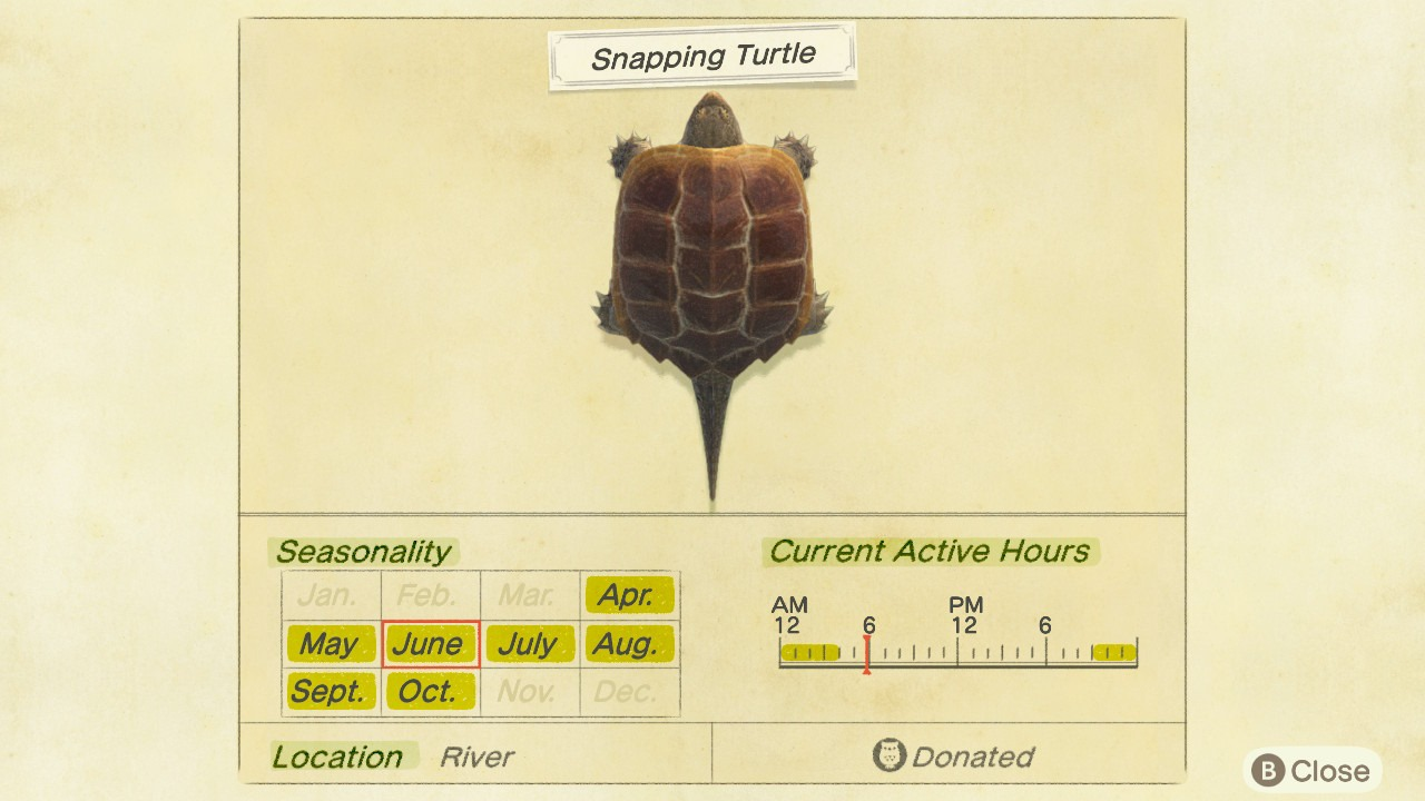 Snapping Turtle Critterpedia Entry