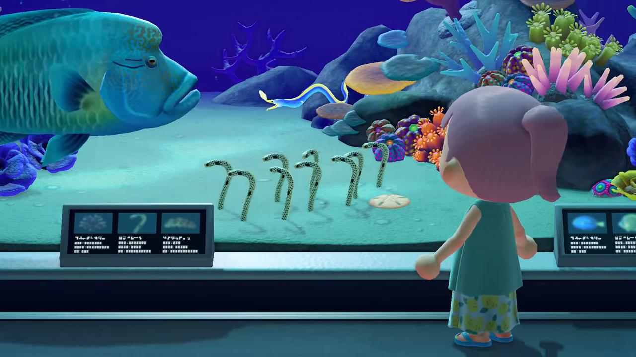 Animal Crossing New Horizons Firework Show