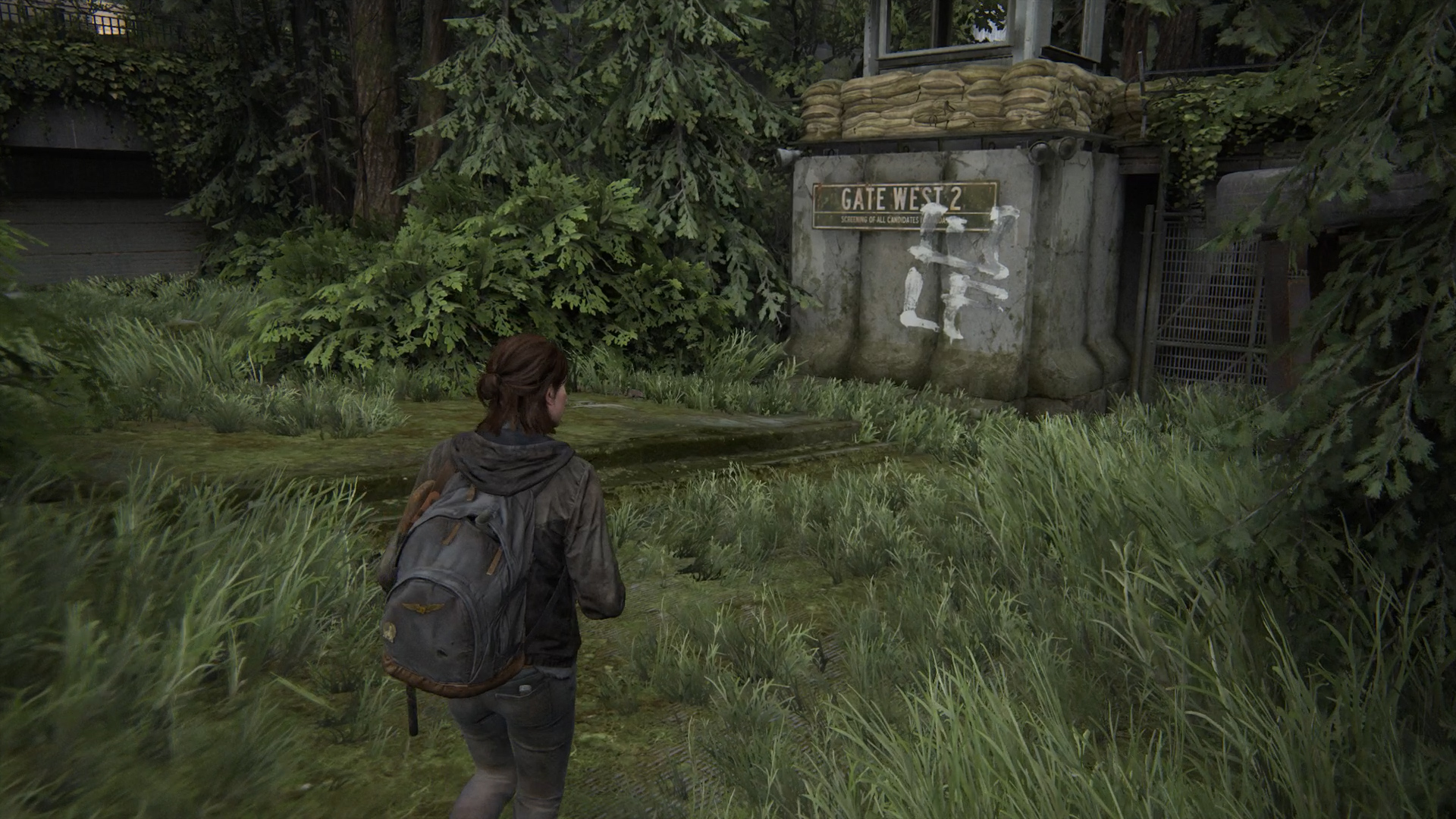 Trading Card locations in Tlou2 - Flo
