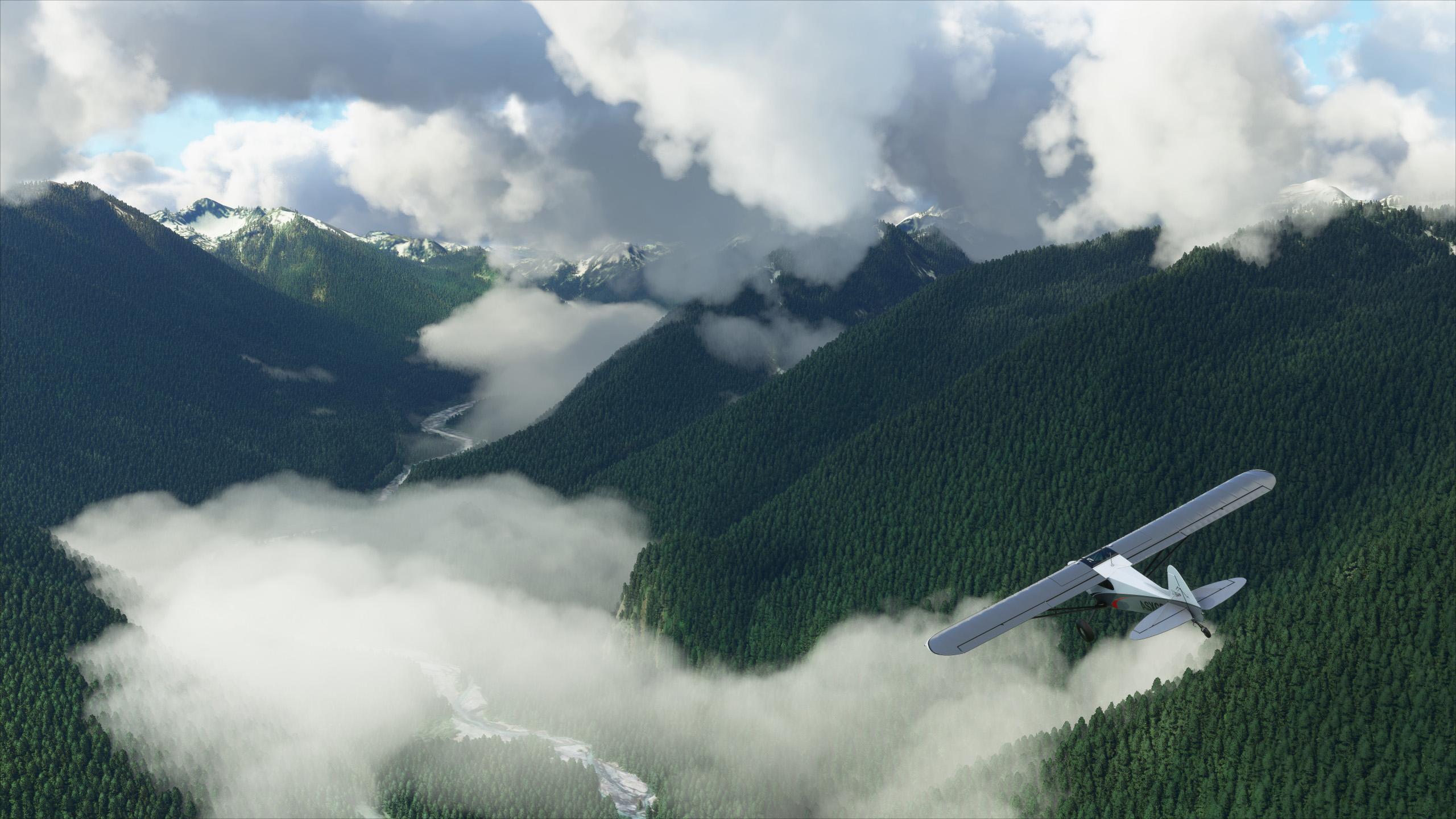 microsoft flight simulator 2020 data usage