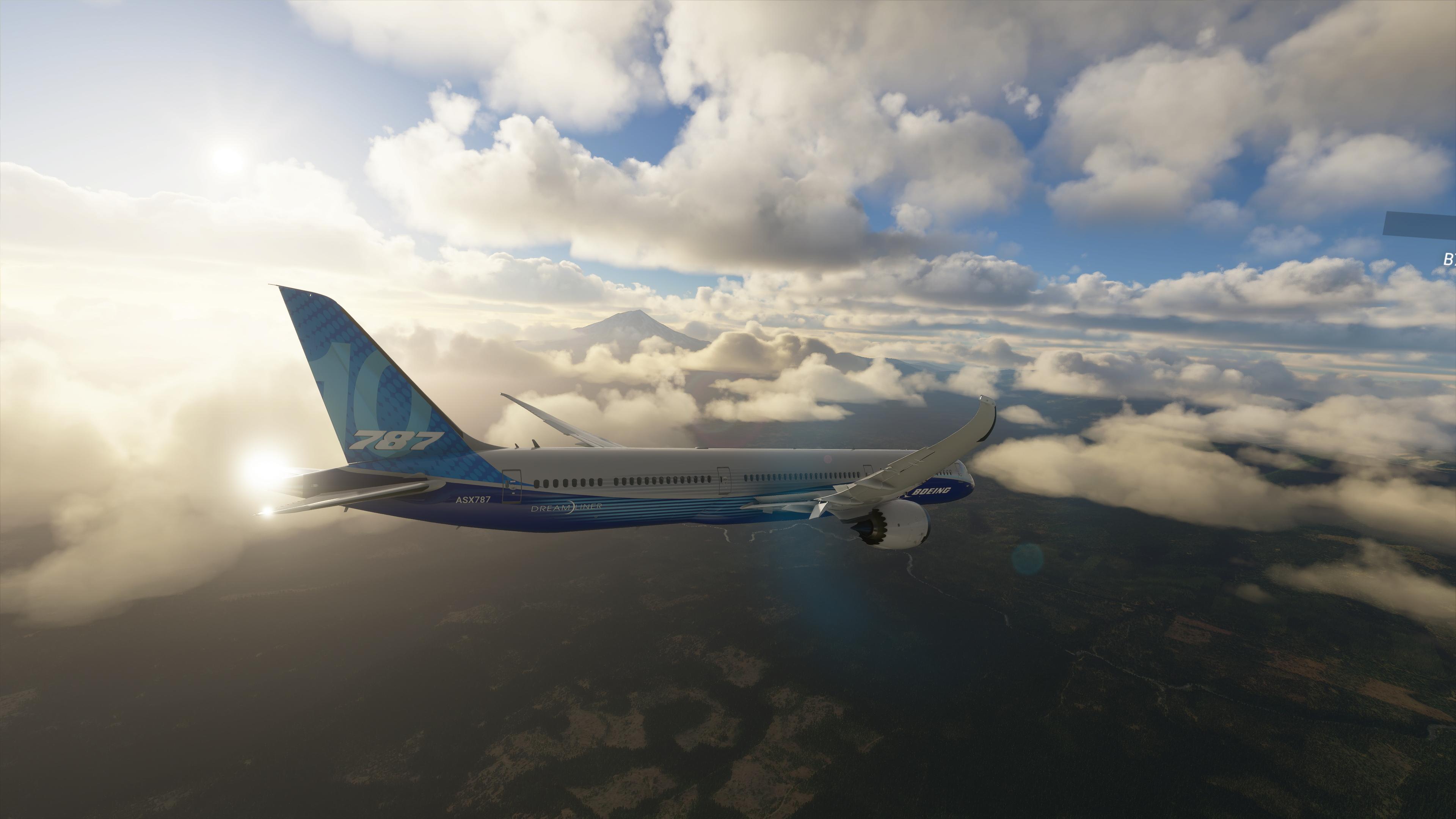 Terrain Level of Detail is the most demanding setting in Microsoft Flight Simulator 2020.
