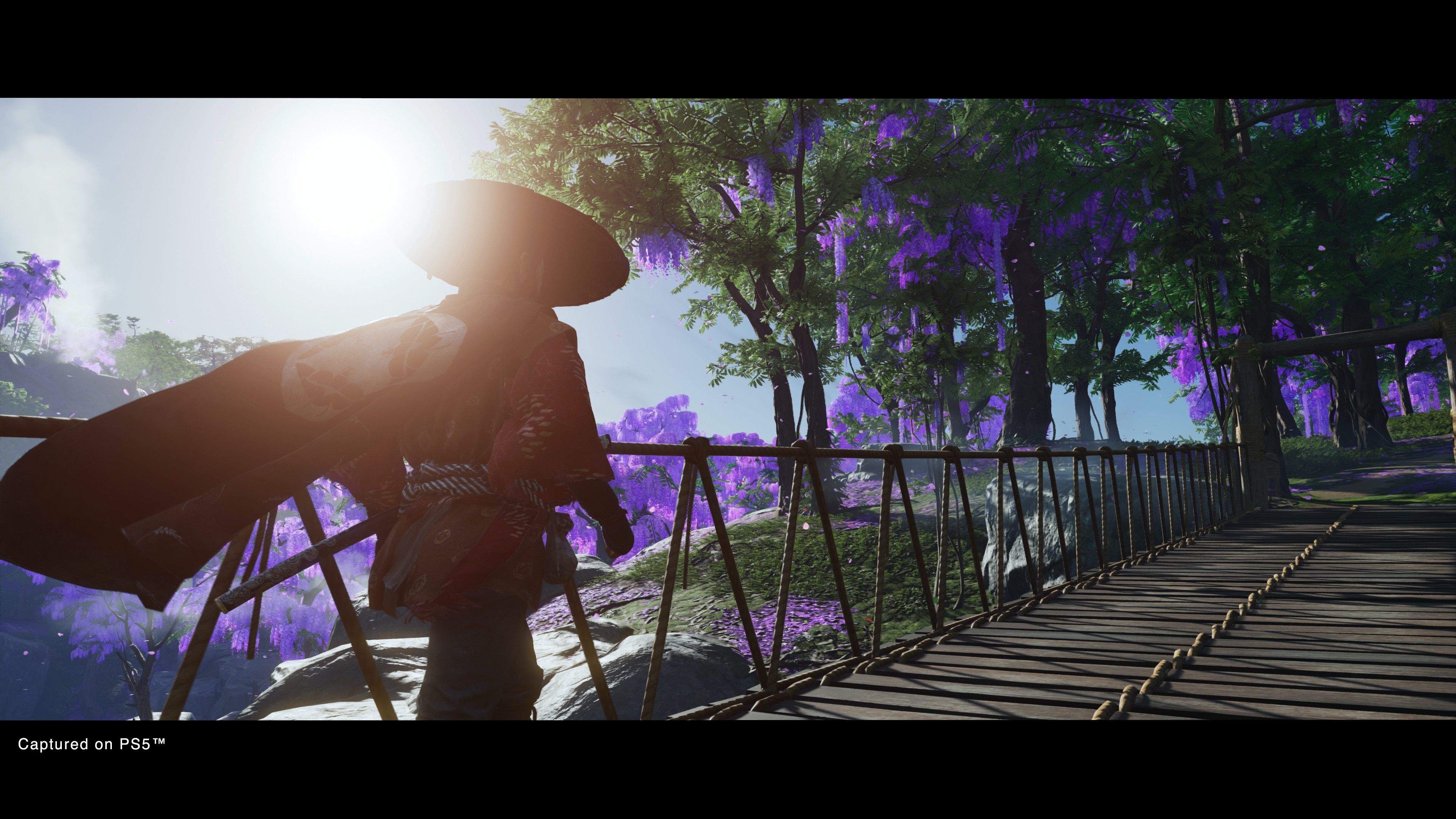 Ghost of Tsushima Director's Cut is looking so fine!