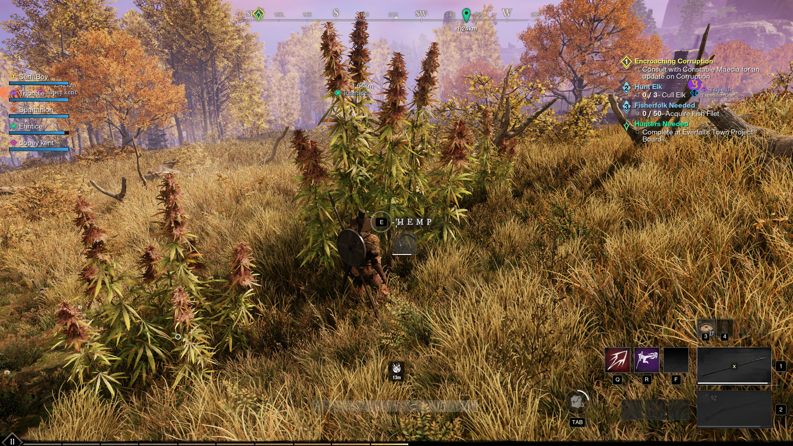 new world hemp